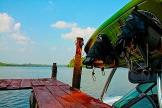Blissful lake in the jungle, Sri Lanka